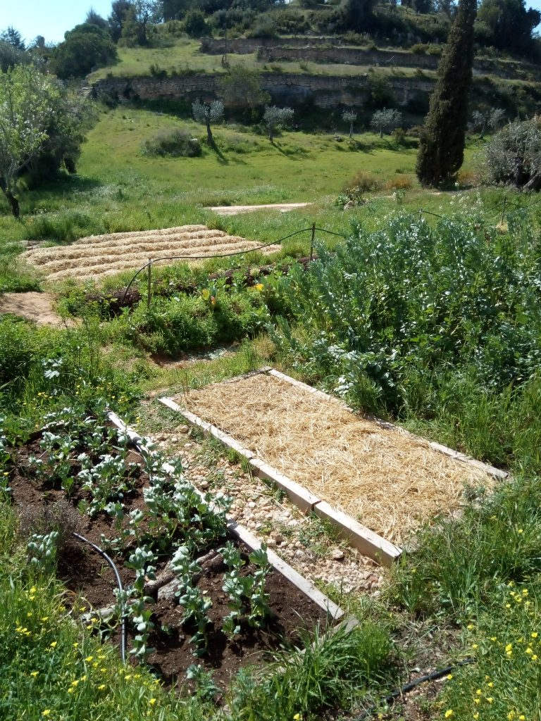 Permaculture Kernow has received it's first funding. 3